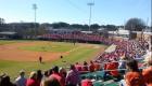 NC_State_baseball_main